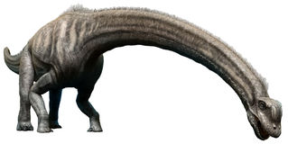 Sauroposeidon Fotografering för Bildbyråer