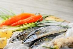 Saury ψάρια και λαχανικό Στοκ εικόνα με δικαίωμα ελεύθερης χρήσης