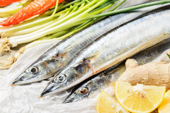 Saury ψάρια και λαχανικό Στοκ Εικόνα