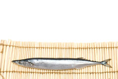 Saury Stock Photography