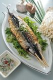 Saury Stock Images
