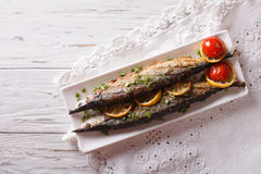 Saury grilled with vegetables on a plate. Horizontal top view Stock Images