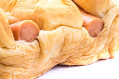 Sausage in baked bread stock image