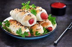 Sausage baked in pastry on a dark background. Royalty Free Stock Photography