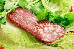 Sausage with basil Royalty Free Stock Images