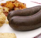Sausage of blood Stock Photo