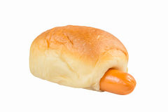Sausage bun isolated Royalty Free Stock Photography