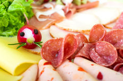 Sausage and cheese Royalty Free Stock Photography