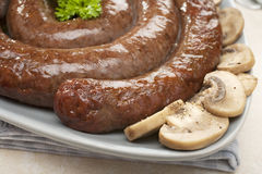 Sausage Coil South Africa Boerewors Stock Images