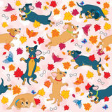 Sausage dogs love fall wallpaper pattern. Fun seamless repeating wallpaper with fall leaves and Sausage dogs vector illustration