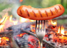 Sausage on a fork. Stock Photo