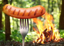 Sausage on a fork. Stock Photography