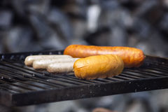 Sausage freshly laid on the grill Stock Image