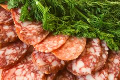 Sausage and green dill Stock Images