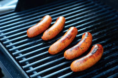 Sausage on the Grill. Italian Sausage cooking on a Grill stock photo