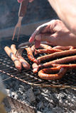 Sausage grilled Stock Photos