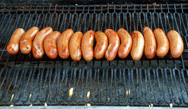 Sausage hot dog. On a fire hot barbecue grill Stock Photos