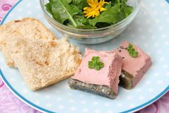 A sausage of liver. A fresh homemade sausage of liver with bread Royalty Free Stock Image