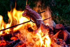 Sausage on metal fork cooked on fire at night. Stock Images