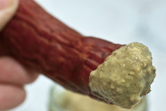 Sausage and mustard. Stock Photography