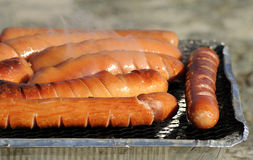 Sausage on one-time grill Stock Image