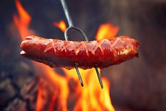 Sausage. Over the bondfire in nature - selective focus royalty free stock photography