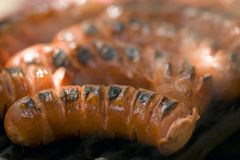 Sausage on a party grill Royalty Free Stock Photos
