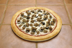 Sausage pizza. Round sausage pizza with thick crust Stock Photography