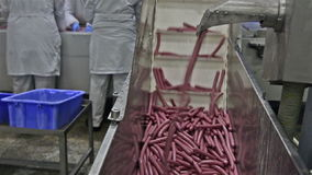Sausage production stock video footage