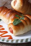 Sausage rolls on a plate with tomato sauce macro vertical Royalty Free Stock Photo