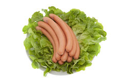 Sausage with salad Royalty Free Stock Photo