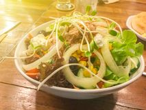 Sausage and salad North side Traditional Food. Of Thailand royalty free stock image