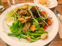 Sausage and salad North side Traditional Food. Of Thailand royalty free stock images