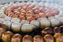 Sausage small circles Royalty Free Stock Image
