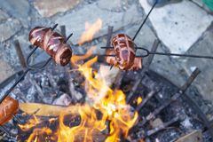 Sausages baking over camp fire. Party with friends royalty free stock image