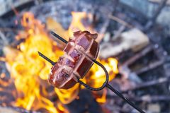Sausages baking over camp fire. Party with friends royalty free stock images