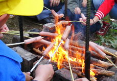 Sausages on bonfire. Sausages on a grill In the background in bonfire Royalty Free Stock Photo