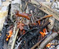 Sausages cooked in the bonfire  during an outdoor picnic Royalty Free Stock Image