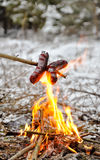 Sausages in fire royalty free stock image