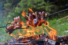 Sausages in the fire Stock Photography