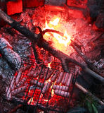 Sausages on the grill. Sausages over a fire in the forest in nature Royalty Free Stock Photo