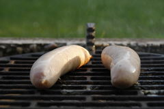 Sausages on grill Royalty Free Stock Image