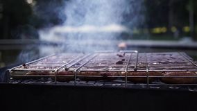 Sausages are grilled on coals in grill for cooking kebabs. Sausages are grilled on coals in grill for cooking kebabs stock video footage
