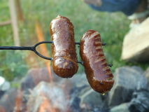 Sausages grilled royalty free stock images