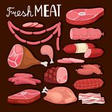 Sausages illustration. Fresh meat and boiled sausage, salami and chicken, raw sliced pork tenderloin and cooked ham for. Barbeque meal and gourmet shopping stock illustration