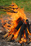 Sausages on sticks grilled above fire Royalty Free Stock Images
