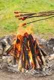 Sausages on sticks grilled above fire Royalty Free Stock Photo