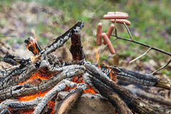 Sausages on sticks roasted on the fire. Royalty Free Stock Images