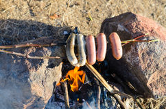 Sausages and Weiners on Stick Cooking over Fire Royalty Free Stock Image
