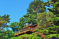 Sausalito, skyline, architecture, California, United States of America, Usa, green, nature, landscape. Wooden house on the green hill of Sausalito on June 17 Stock Photos